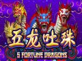 5 Fortune Dragon