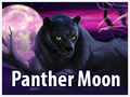 Panther Moon Novomatic