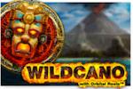 Wildcano